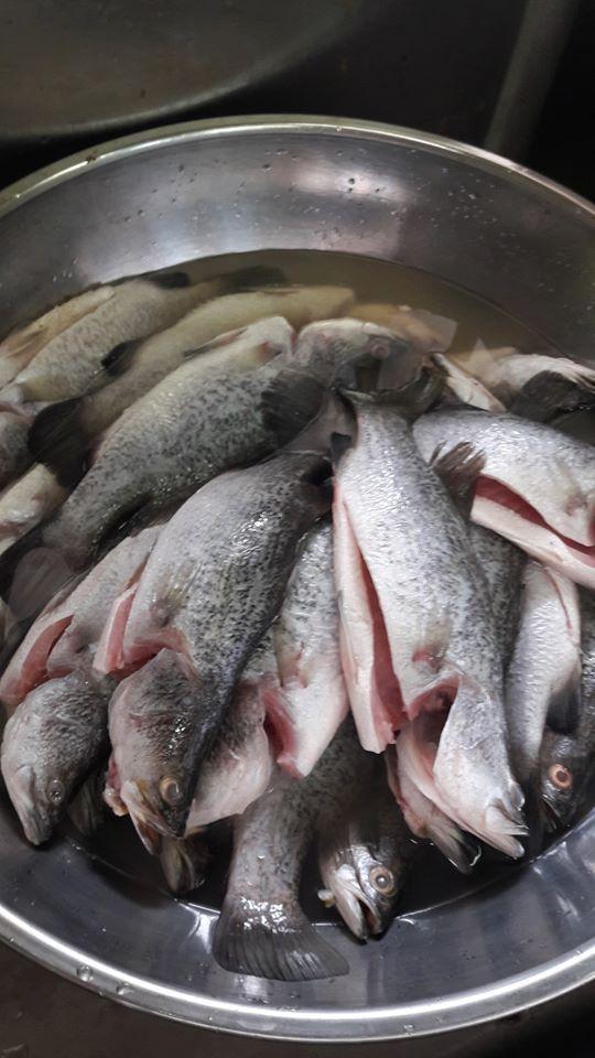 resepi-ikan-siakap-stim-mudah-2 Resepi Siakap Stim Mudah Jer Tak Susah Lagipun Sihat Tau