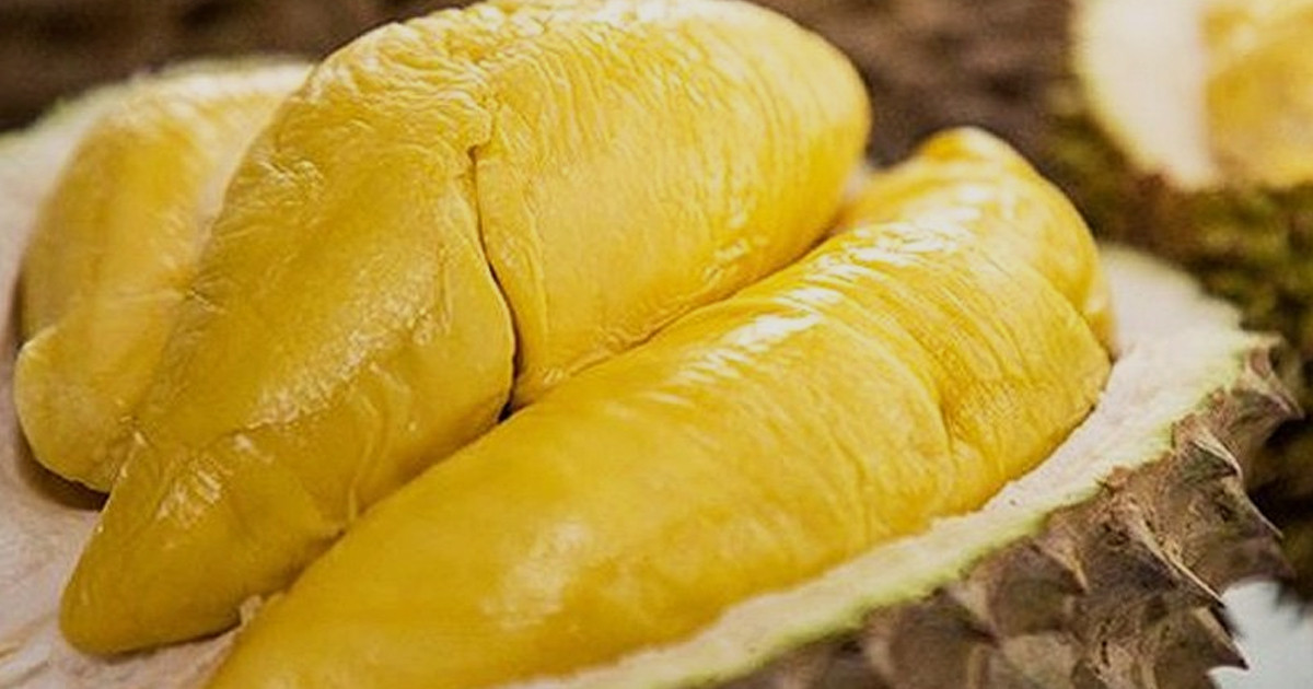 hukum-jual-beli-buah-durian Hukum Feqah Bab Jual Beli Buah Durian Mengikut Maulana Ahmad Lutfi Muharram