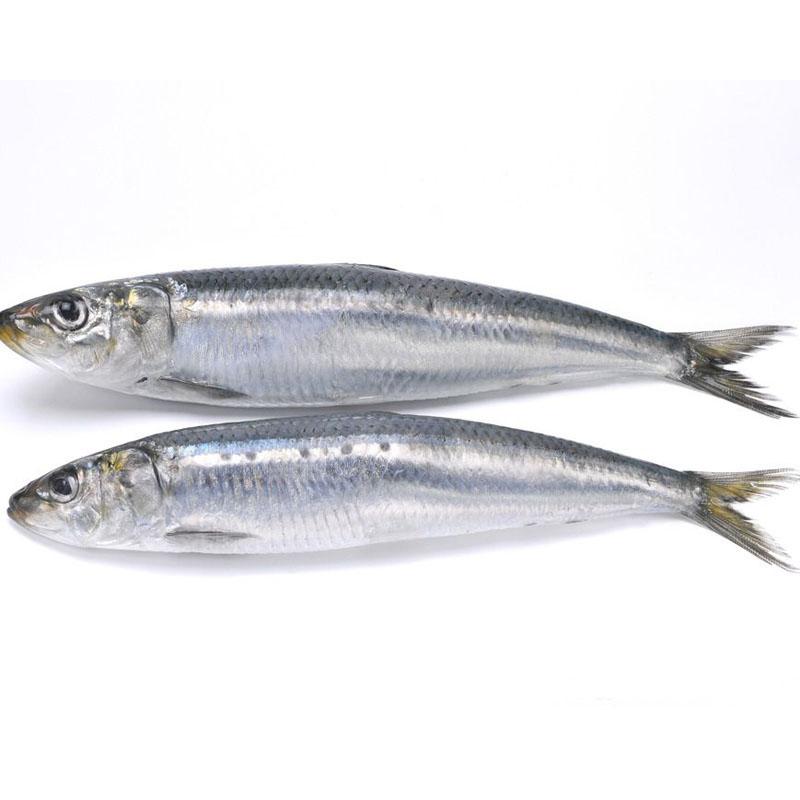 roti-sardin-gulung-yang-rangup Resepi Roti Sardin Gulung Rangup. Sedap Dibuat Bekal Seisi Keluarga..