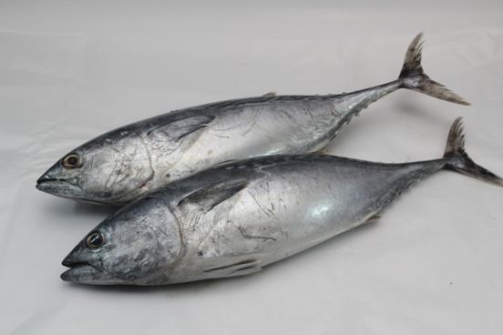 resepi-ikan-tongkol-rebus-kelantan-2 Resepi Ikan Tongkol Rebus Kelantan. Memang Tak Hanyir, Isi Pejal Dan Sedap